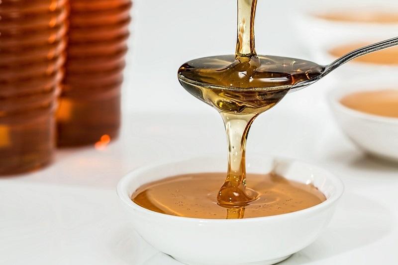Best Plants for Better Honey Production